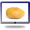 icon potato